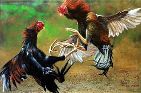 Sabung Ayam Online situs S128